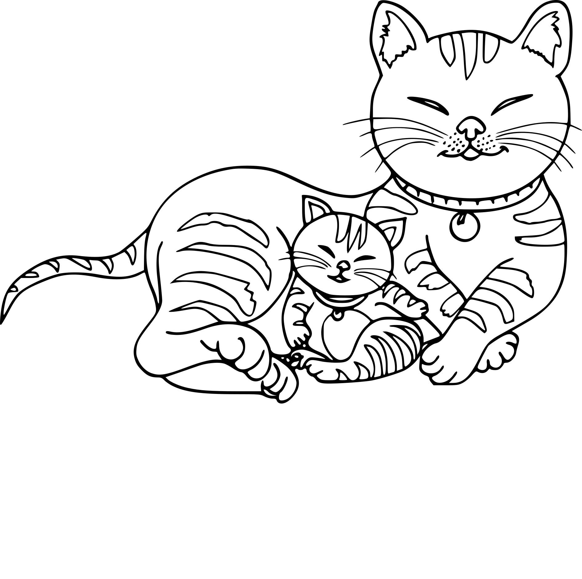Coloriage Chat Et Chaton A Imprimer Sur Coloriages Info